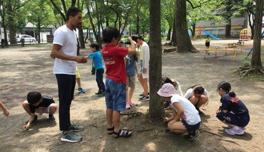 Summer School Week Two: Earth Sciences
