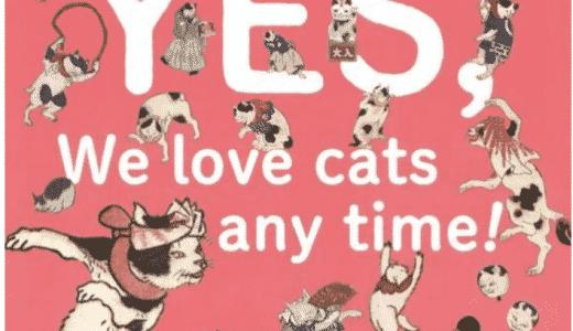 """""""At Innocence Plus,WE LOVE CATS!""""イベントのおしらせ😺"""